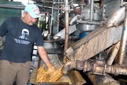 Concluyó reparación capital en fábrica Torula de Cienfuegos